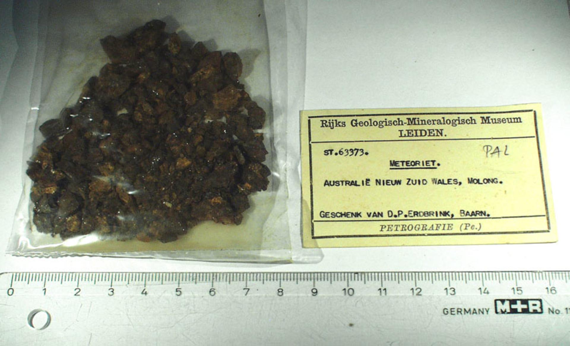 RGM.1002719 | Pallasite, PMG