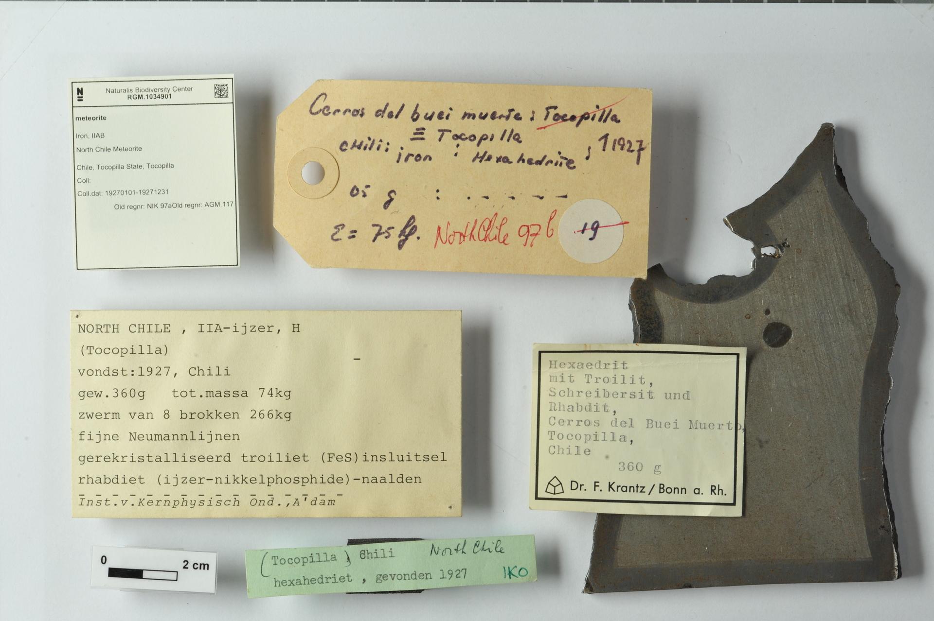 RGM.1034901 | Iron, IIAB
