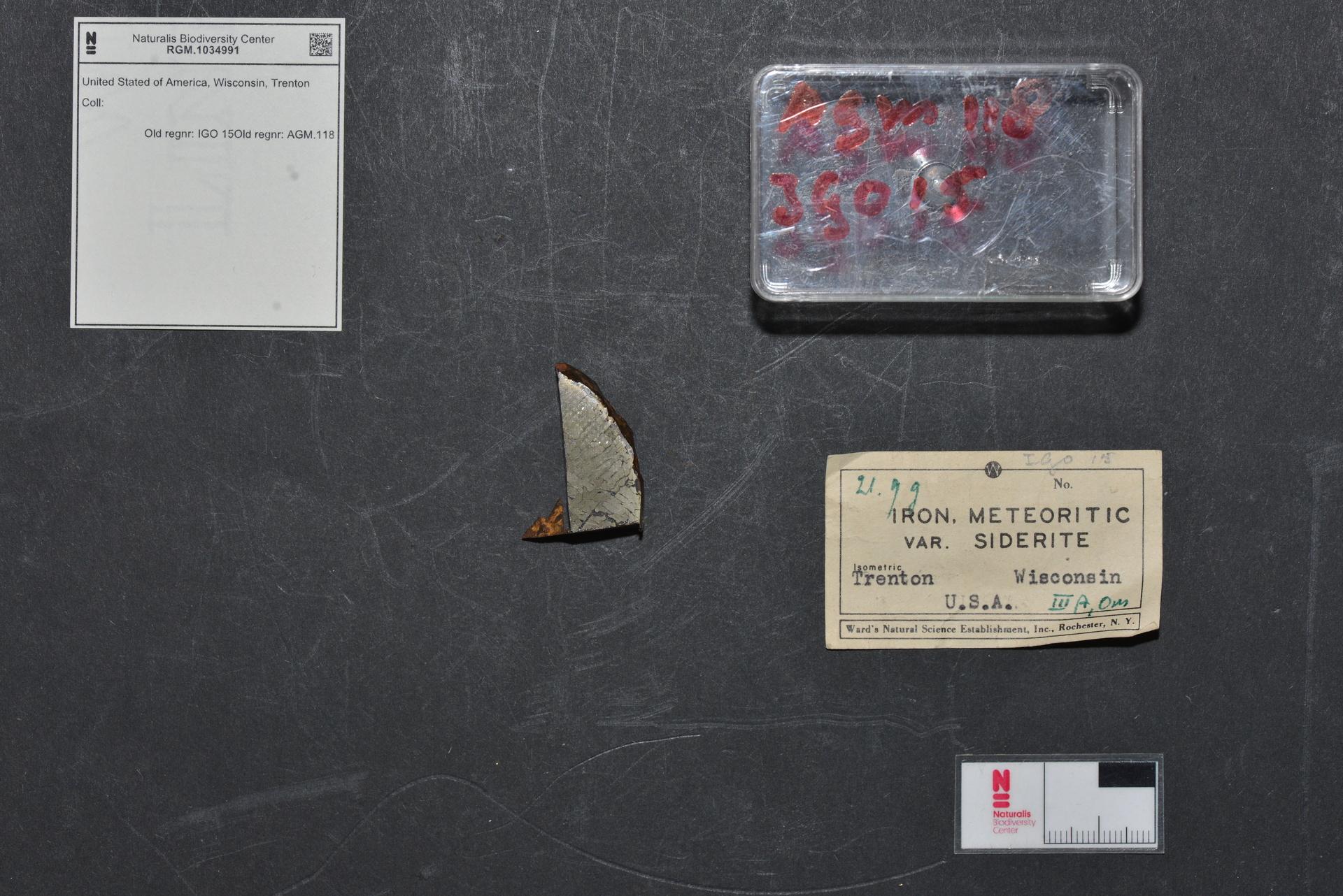 RGM.1034991   Iron, IIIAB