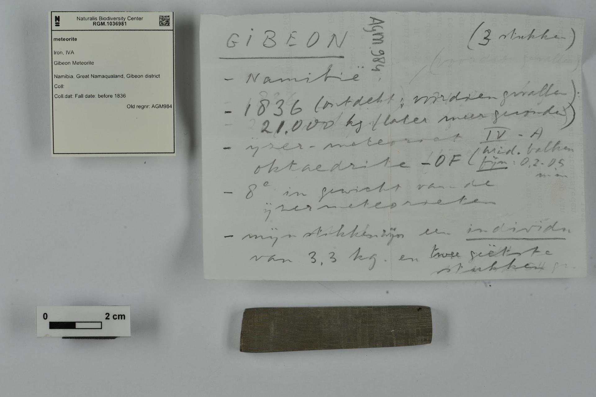 RGM.1036981 | Iron, IVA