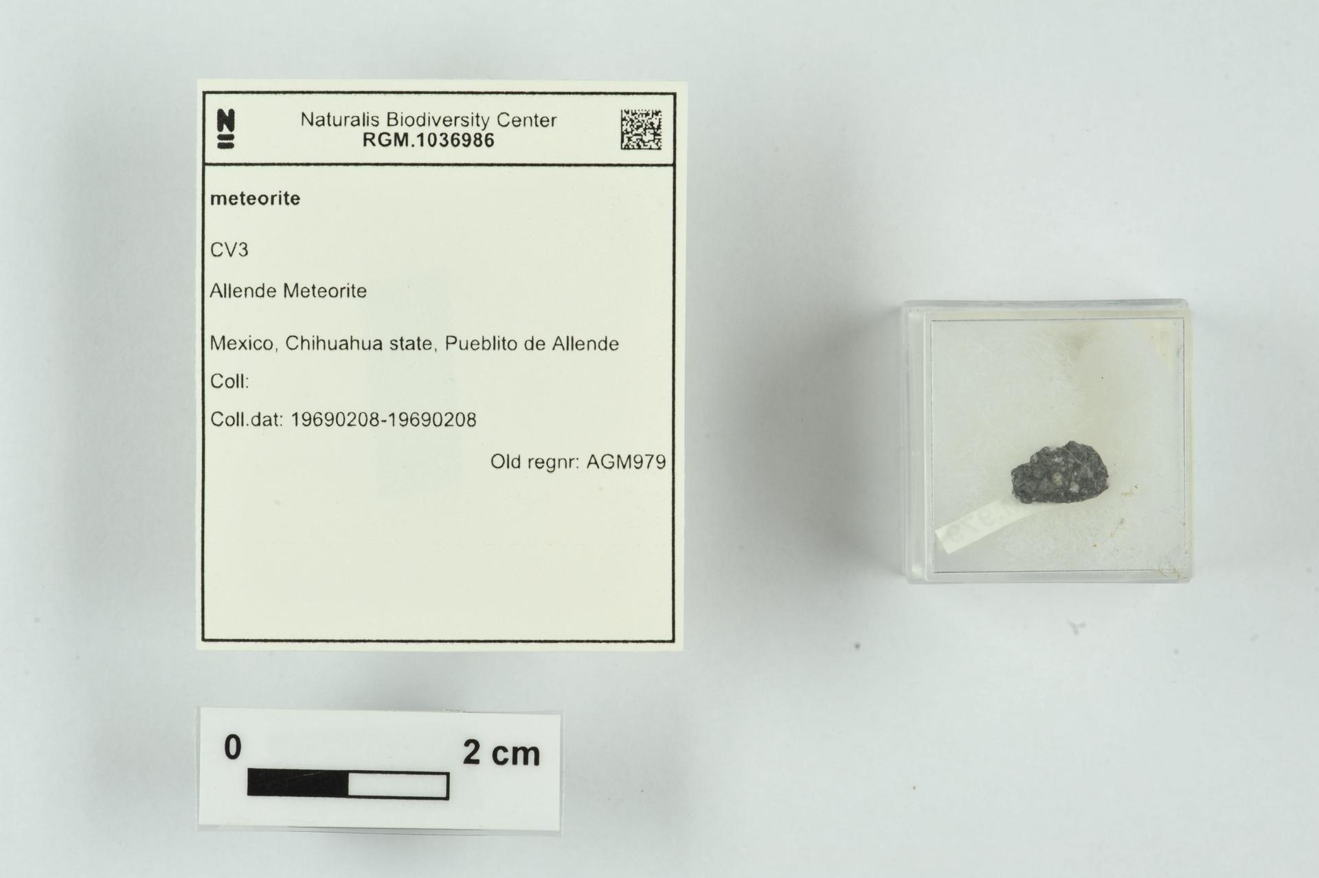 RGM.1036986   CV3