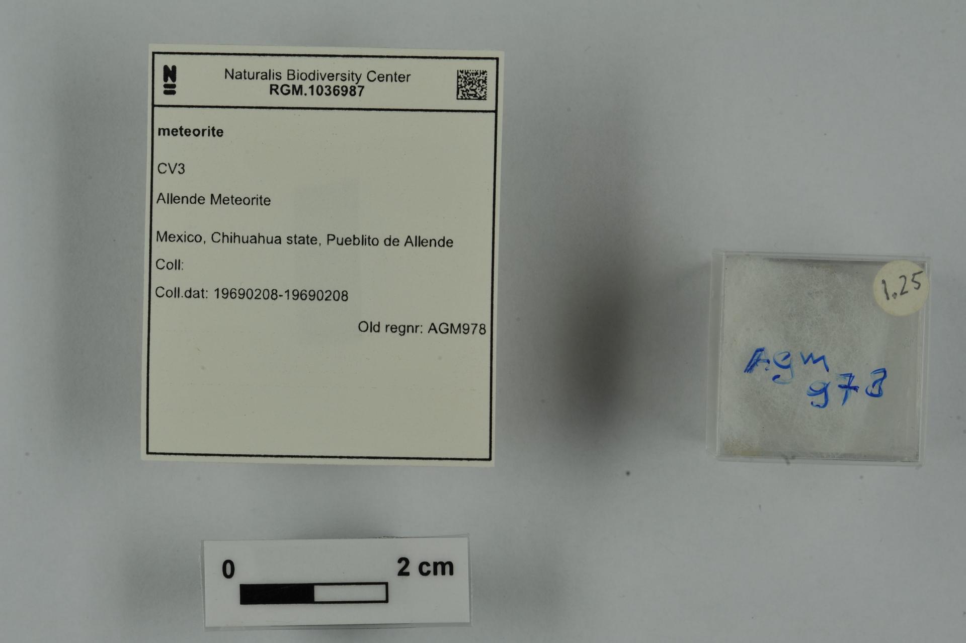 RGM.1036987 | CV3