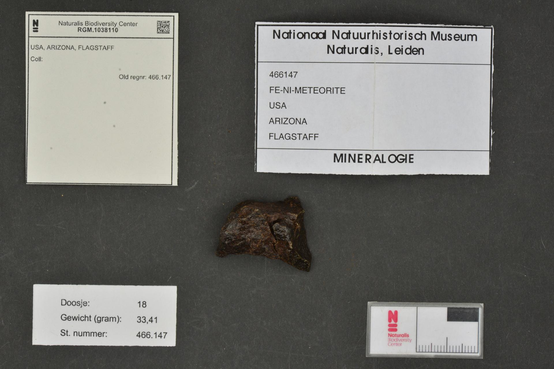 RGM.1038110 | Iron, IAB-MG