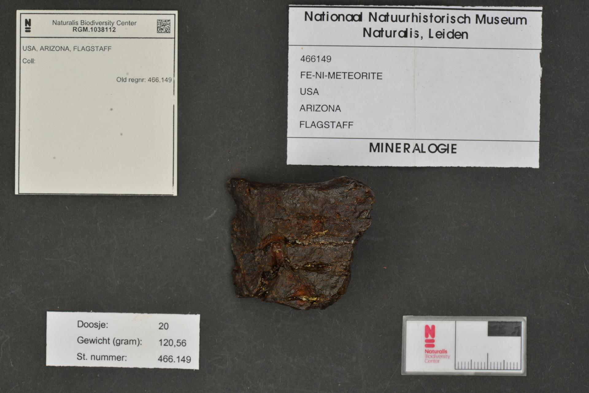 RGM.1038112 | Iron, IAB-MG