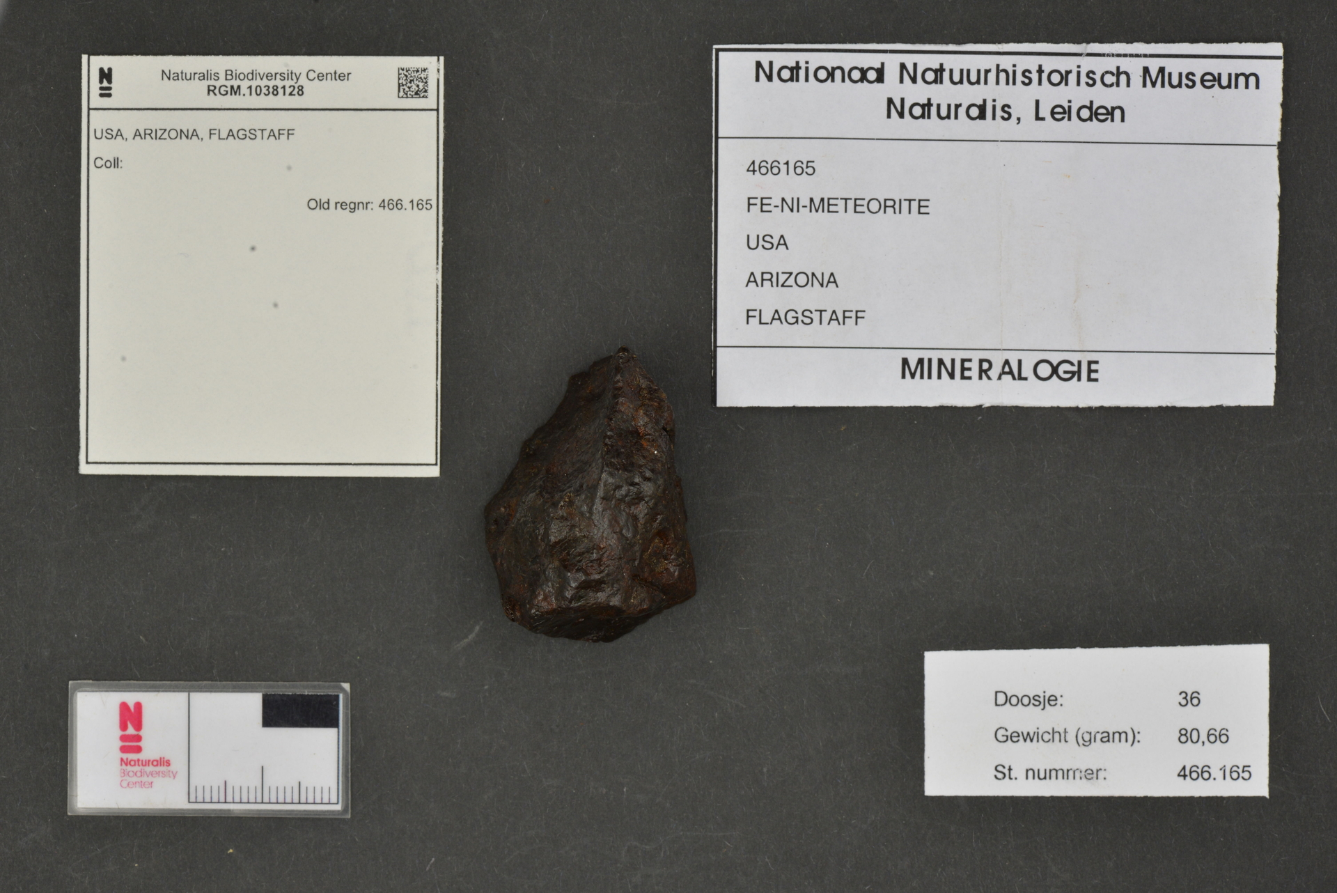 RGM.1038128 | Iron, IAB-MG