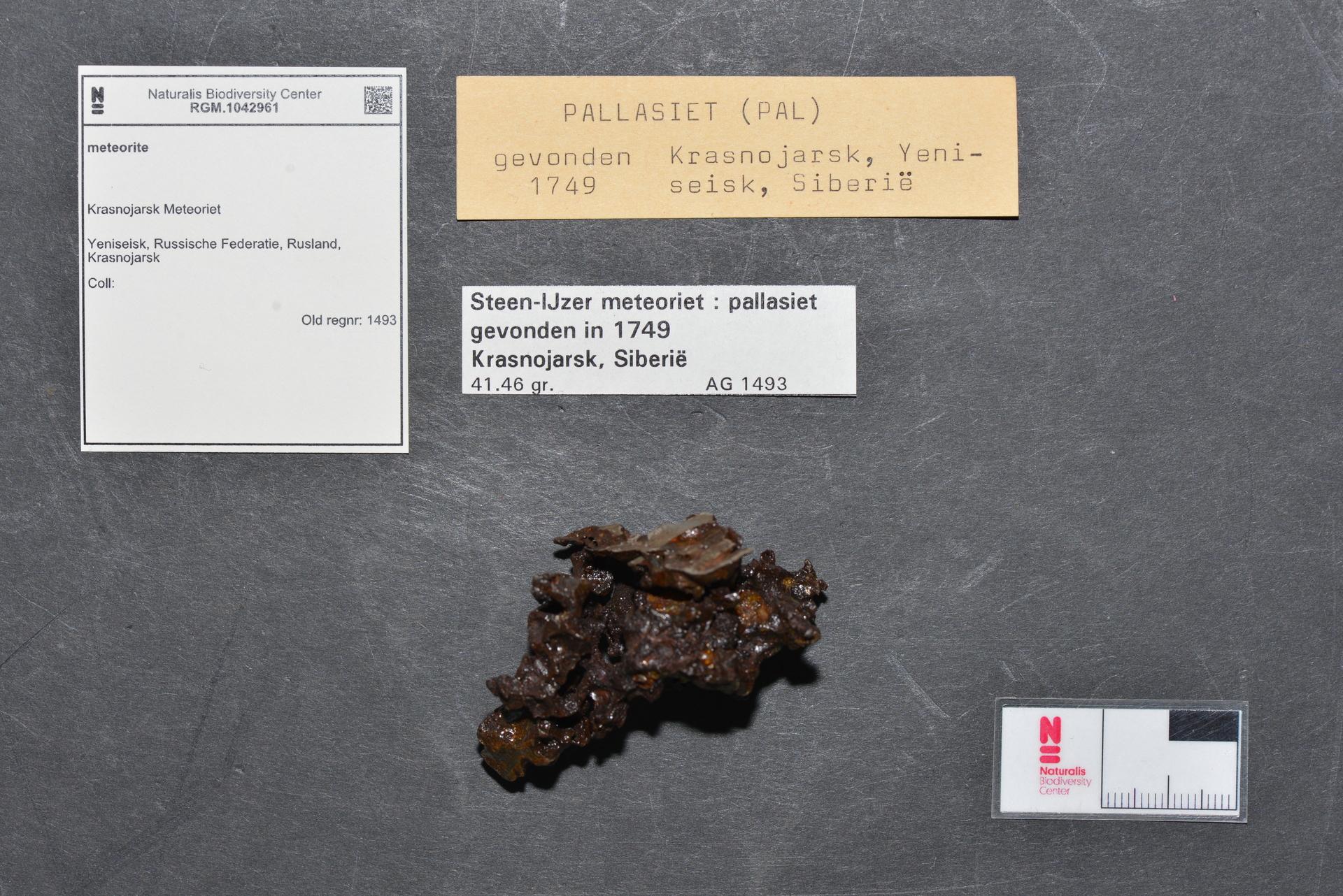 RGM.1042961 | Pallasite, PMG-an