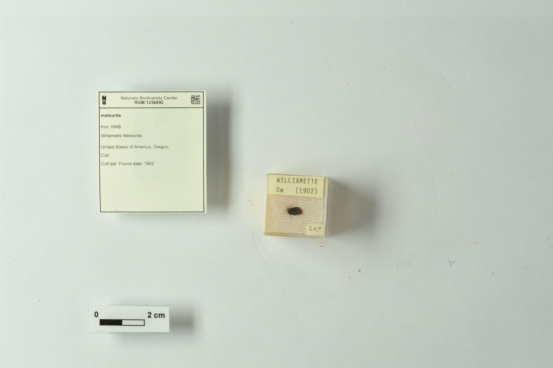 RGM.1256892   Iron, IIIAB