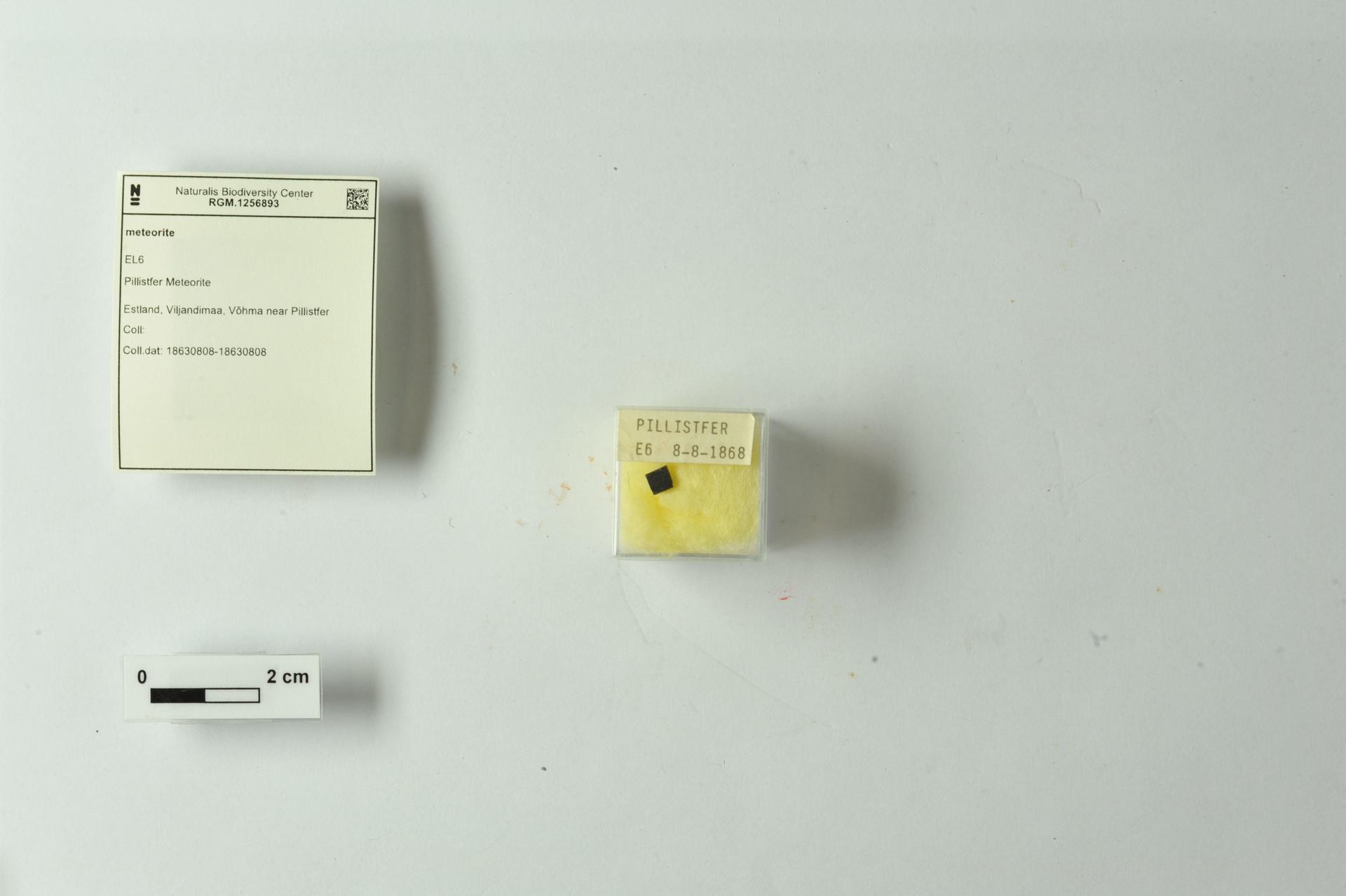 RGM.1256893 | EL6