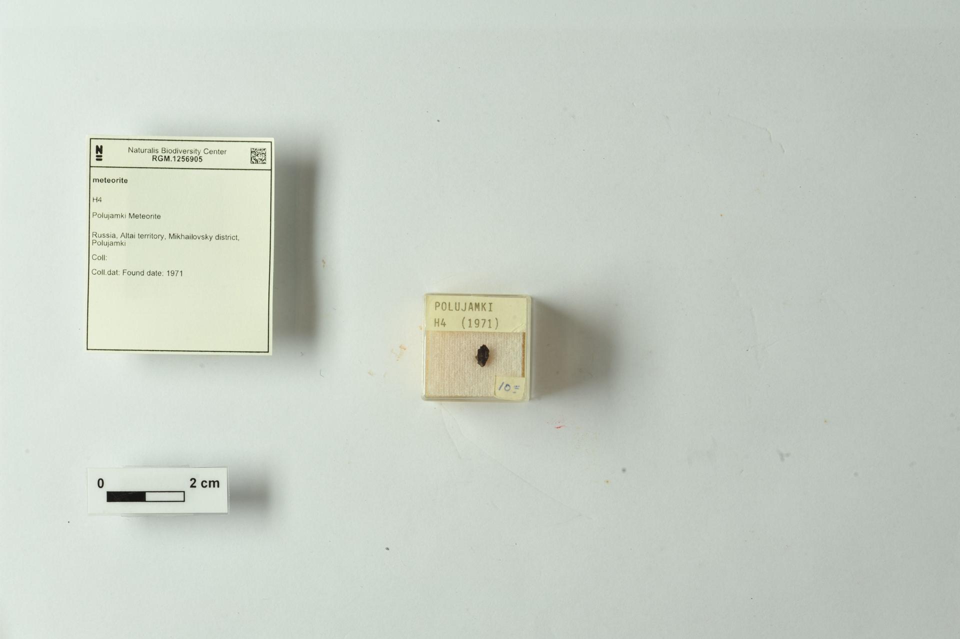 RGM.1256905 | H4
