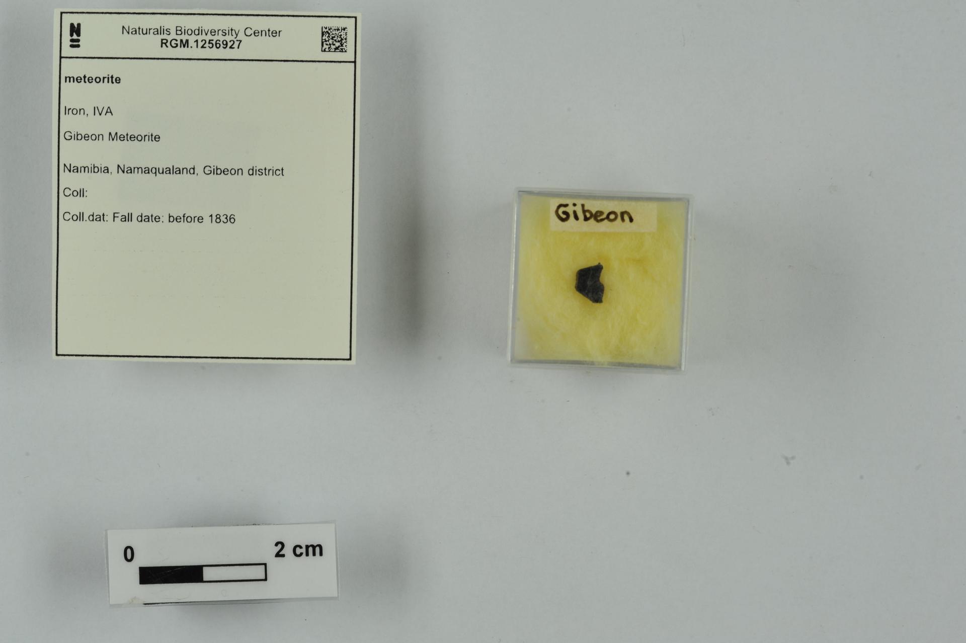 RGM.1256927   Iron, IVA