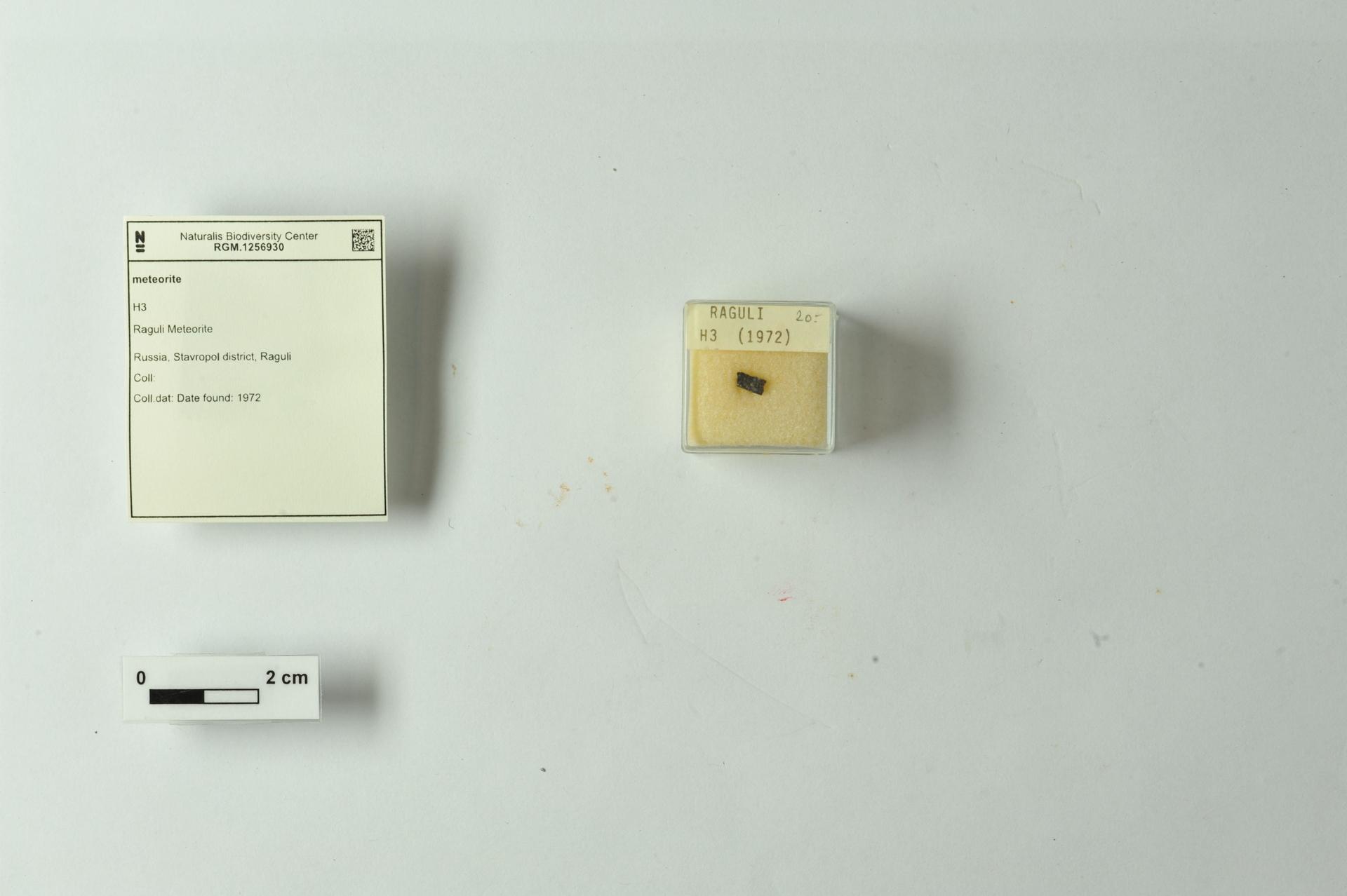 RGM.1256930 | H3