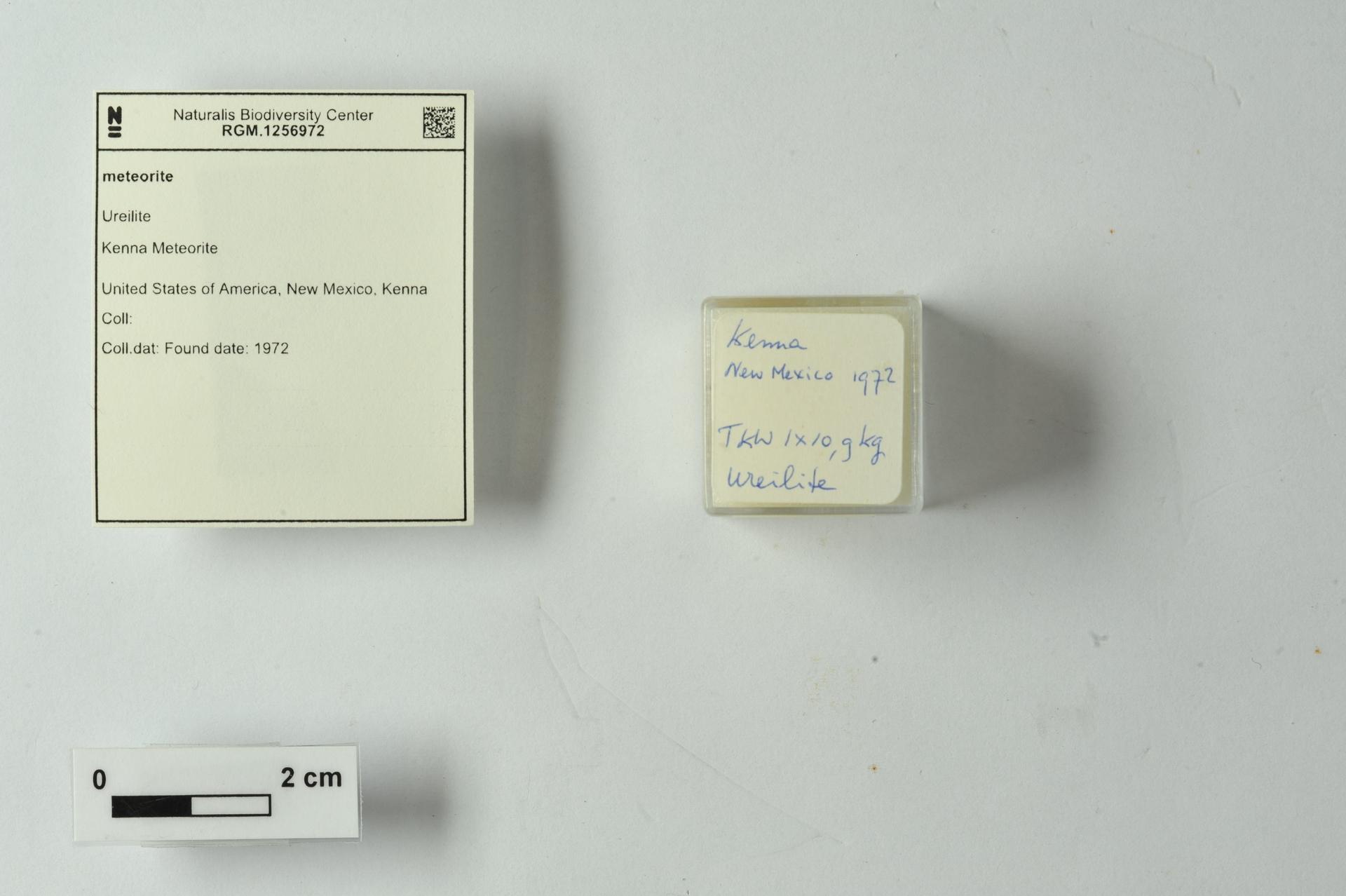 RGM.1256972   Ureilite