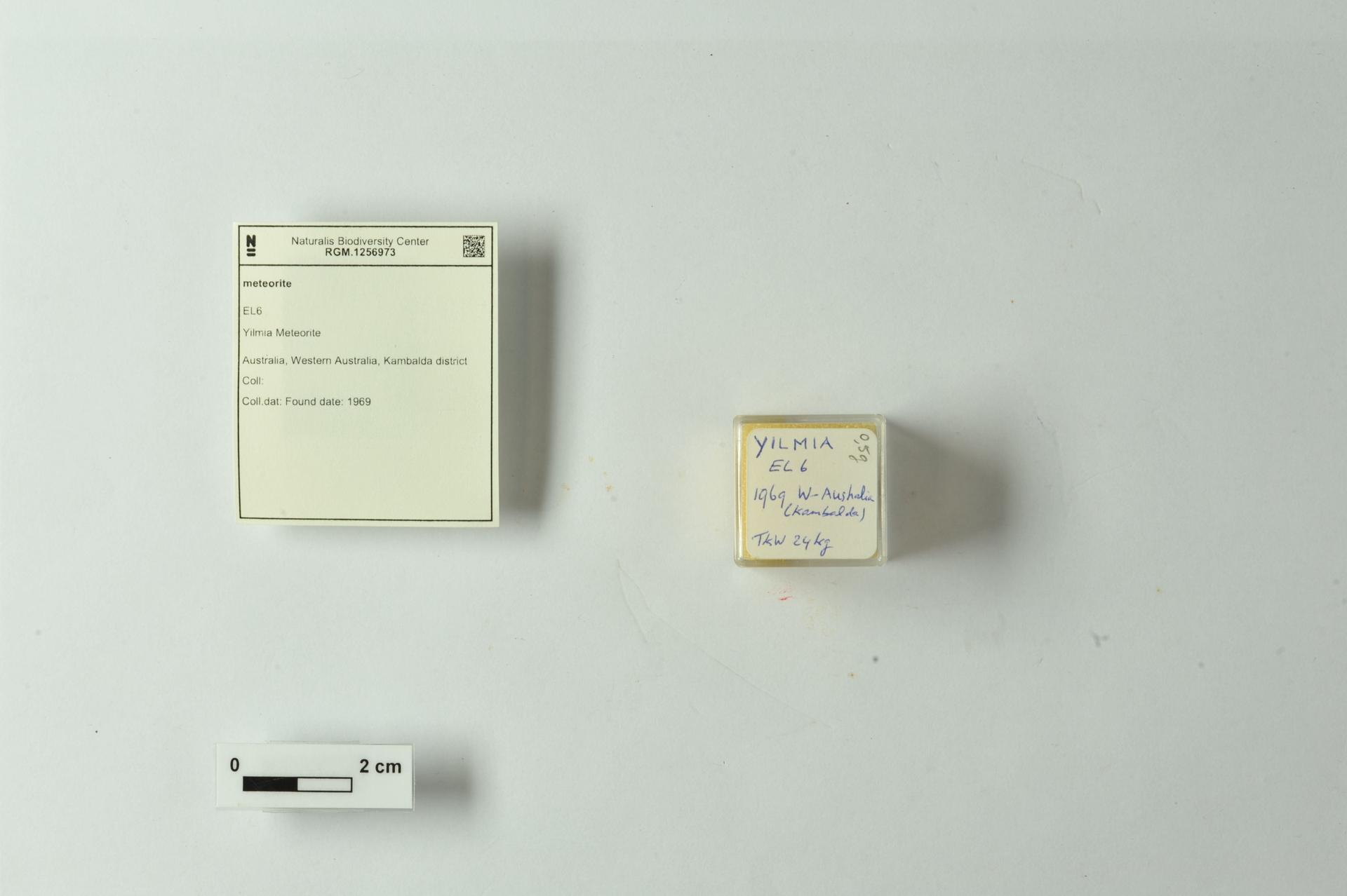 RGM.1256973 | EL6