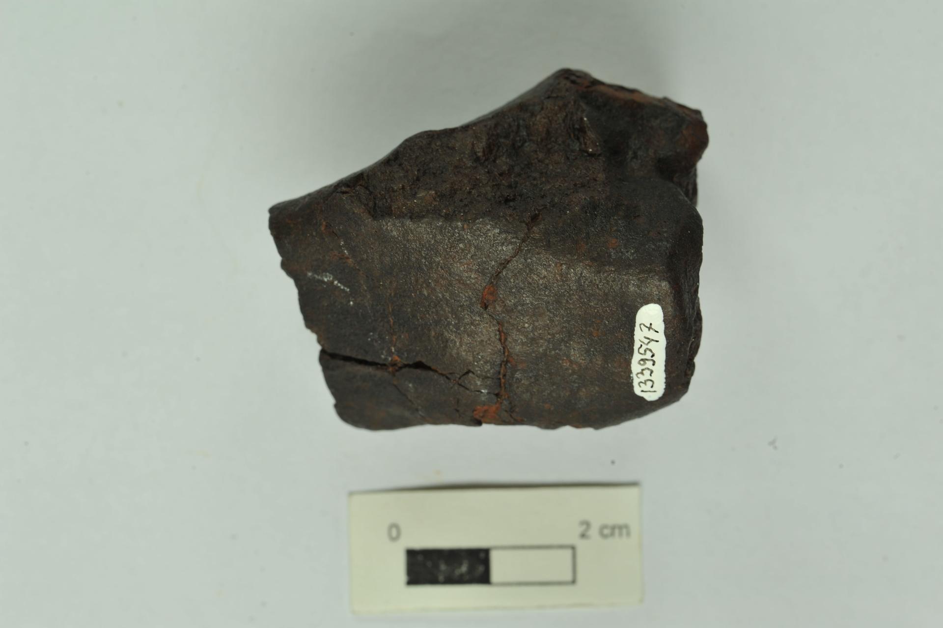 RGM.1339547 | Chondrit L III