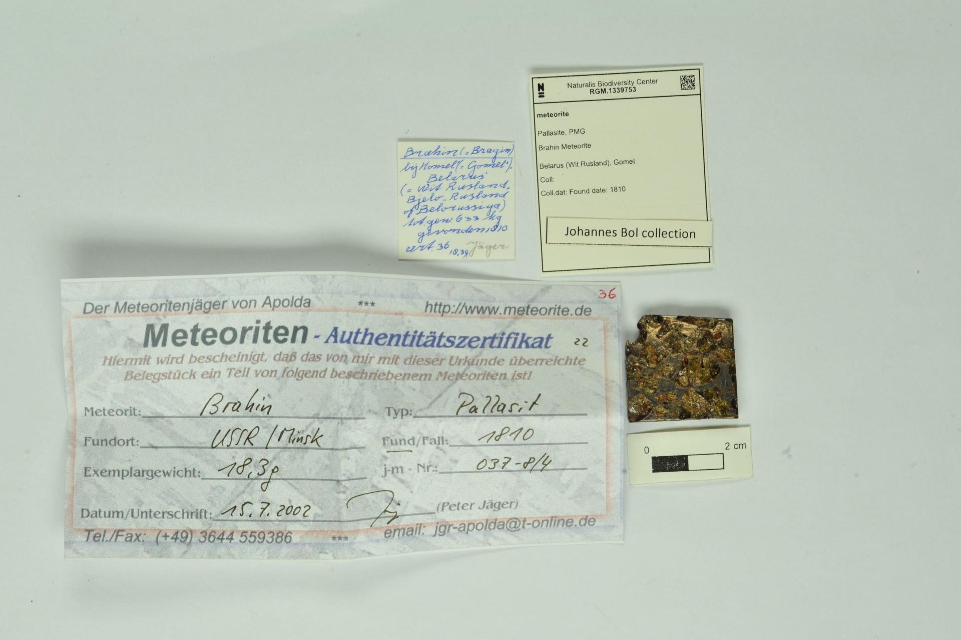 RGM.1339753 | Pallasite, PMG