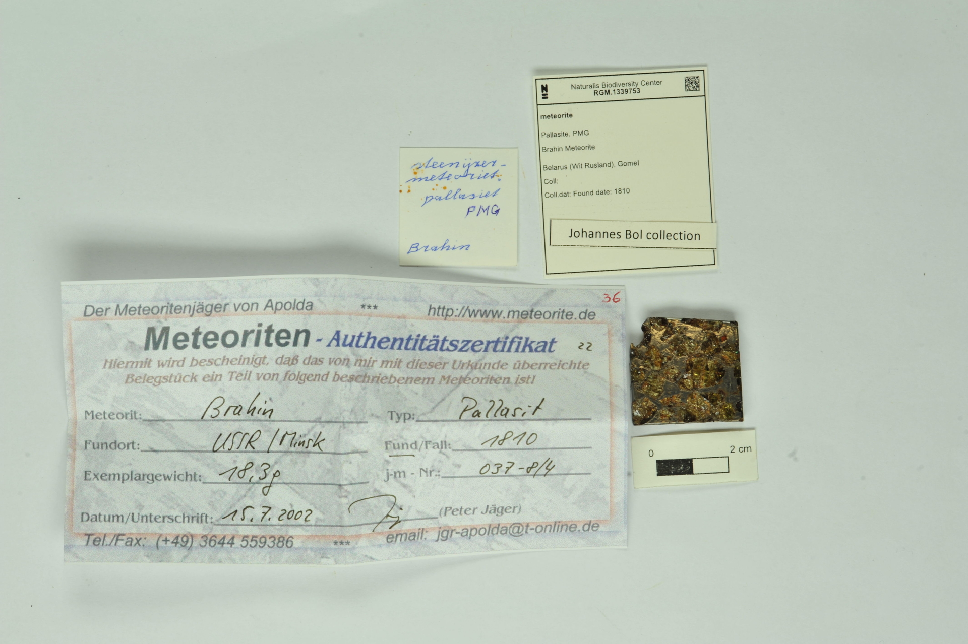 RGM.1339753   Pallasite, PMG