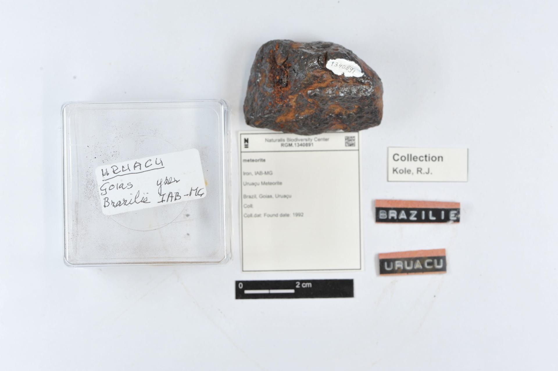 RGM.1340891 | Iron, IAB-MG