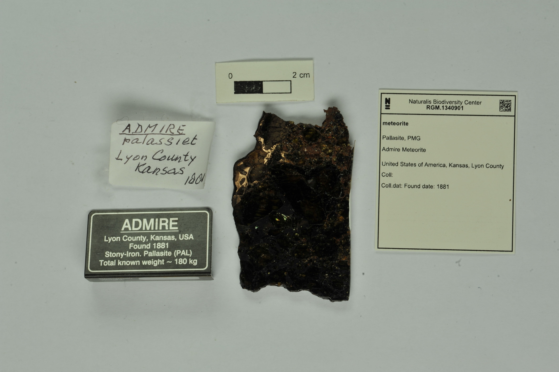 RGM.1340901 | Pallasite, PMG