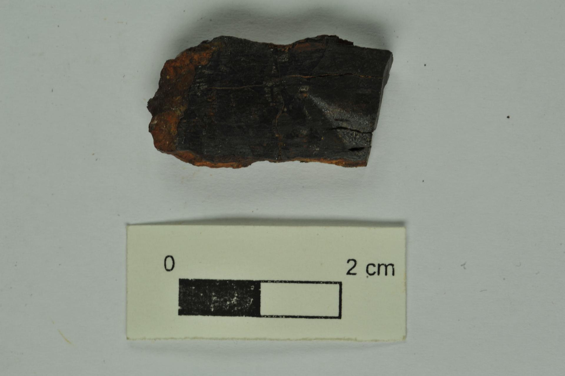 RGM.1340906 | Pallasite, PMG-an