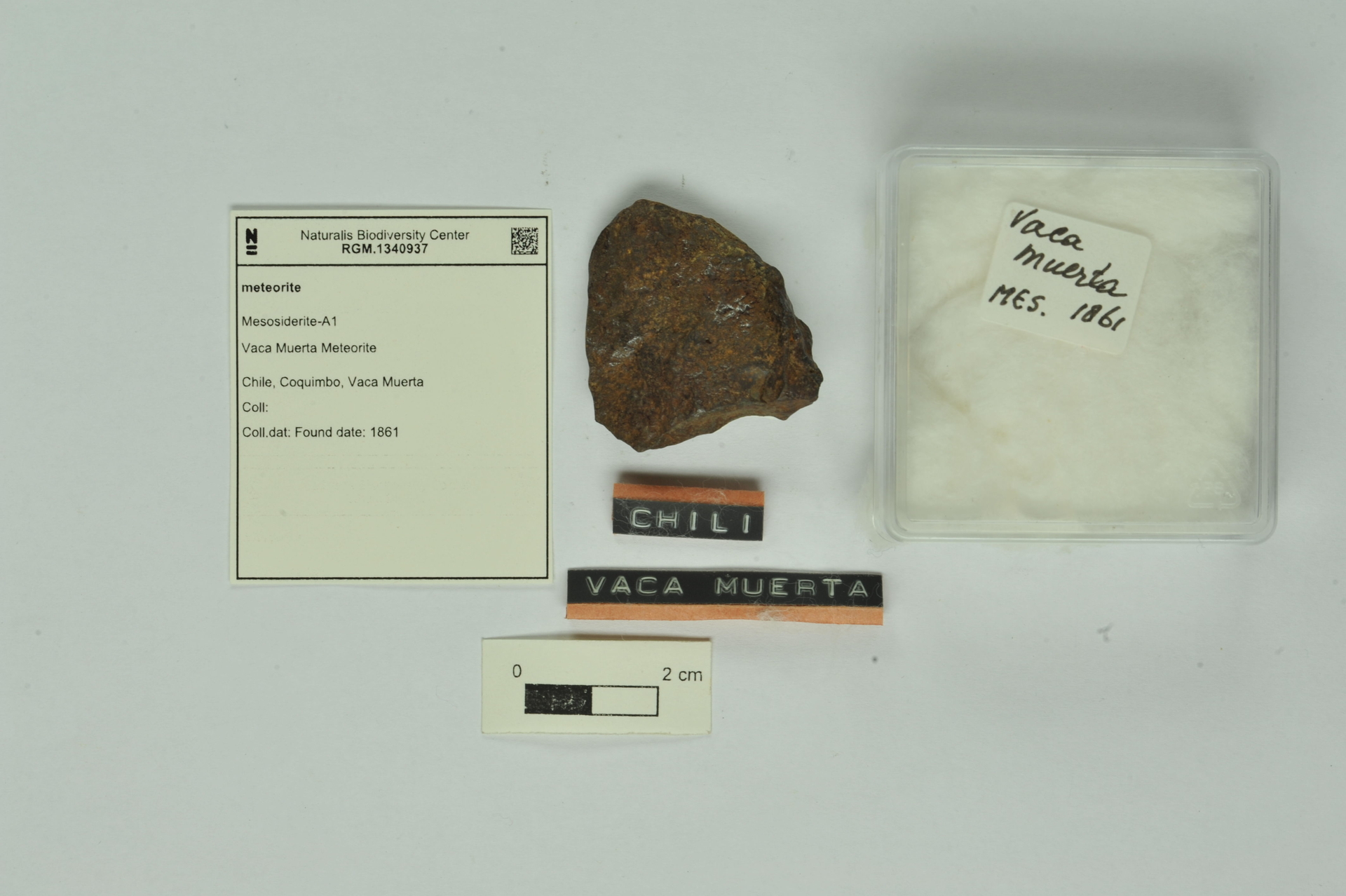 RGM.1340937   Mesosiderite-A1