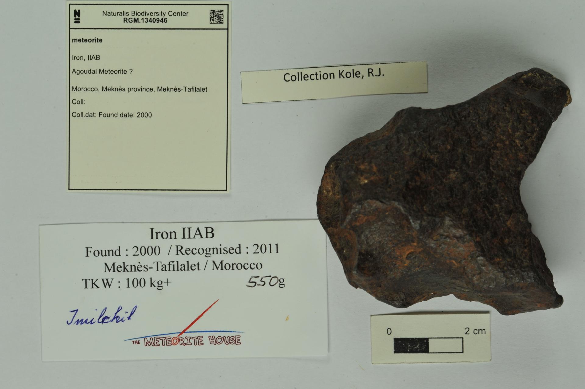 RGM.1340946 | Iron, IIAB