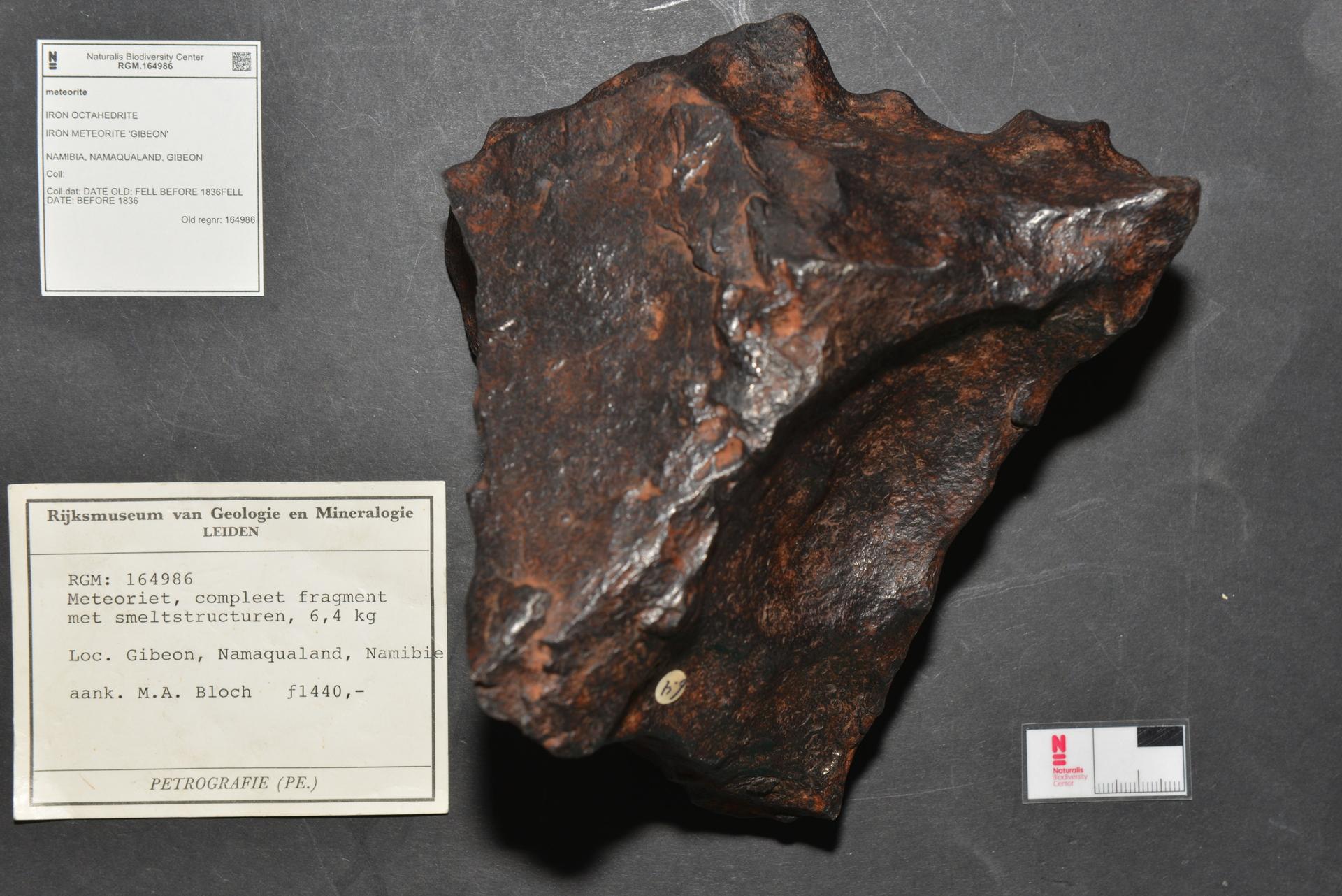 RGM.164986 | Iron, IVA