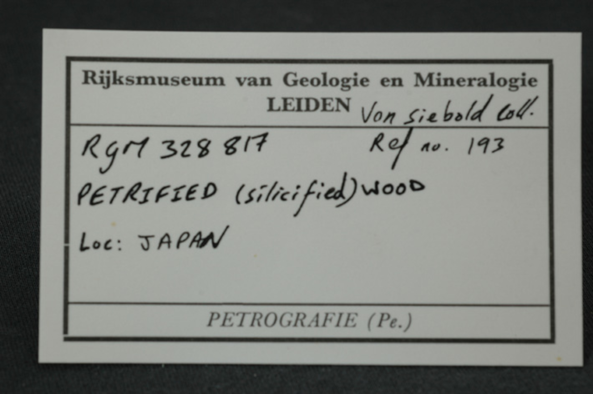 RGM.328817 | PETRIFIED (SILICIFIED) WOOD