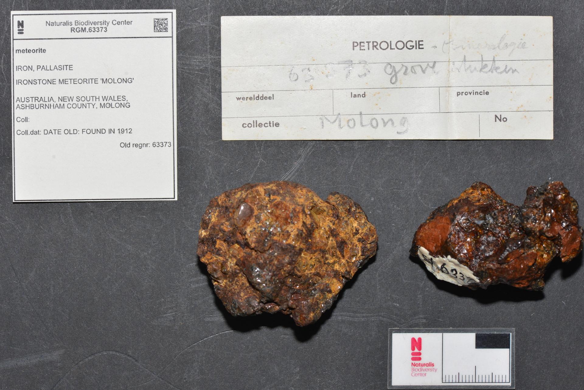 RGM.63373 | Pallasite, PMG