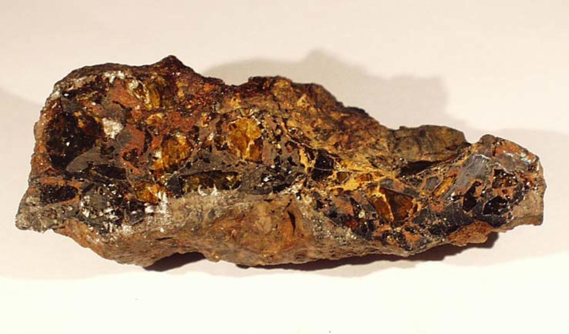 RGM.65903 | Pallasite, PMG