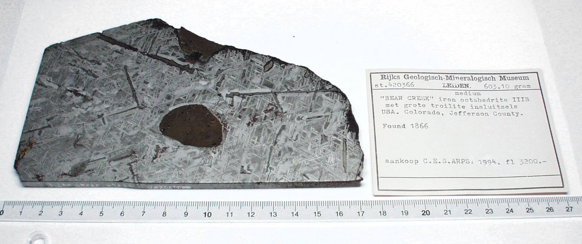 RGM.851131 | Iron, IIAB