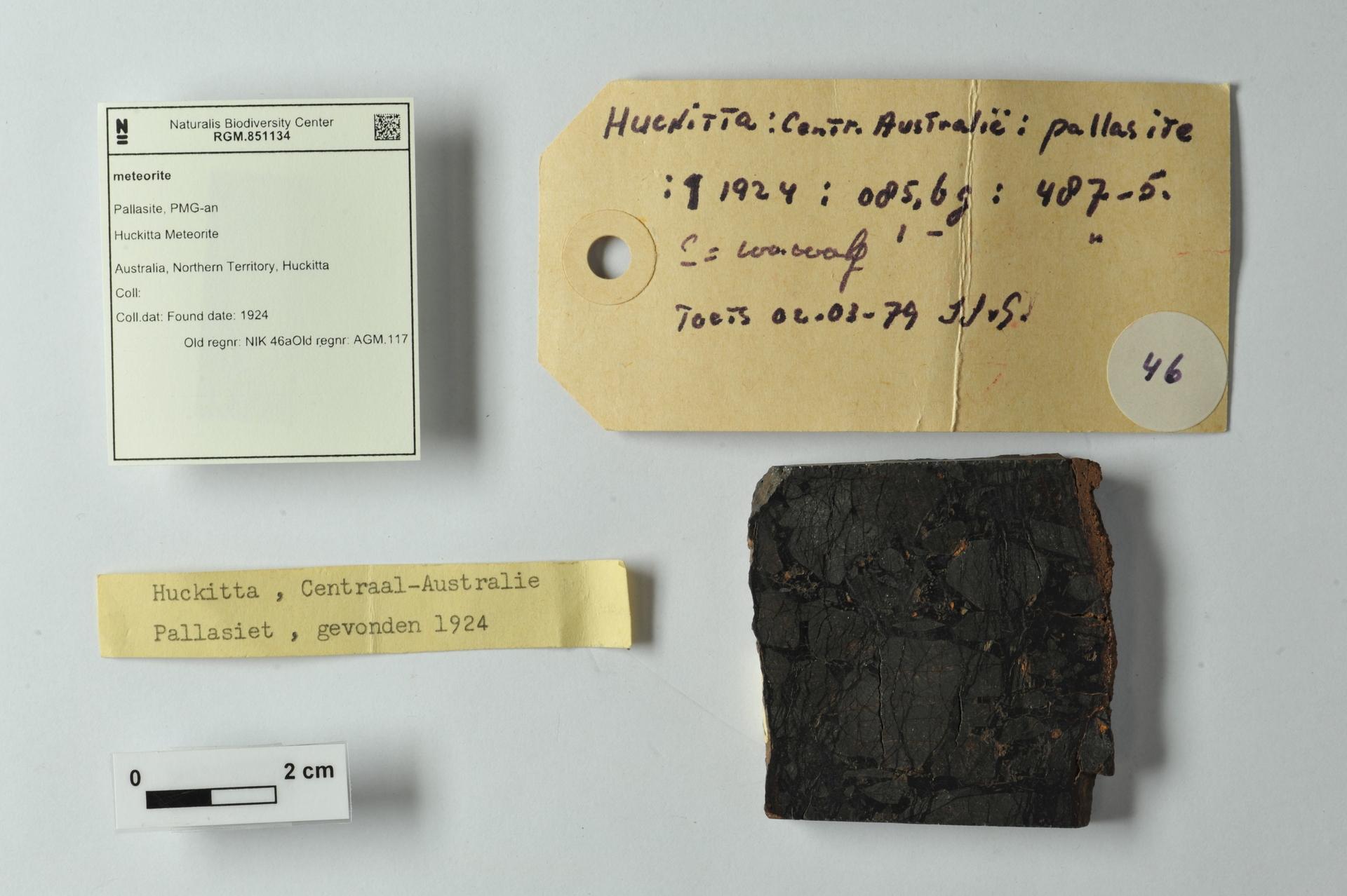 RGM.851134 | Pallasite, PMG-an