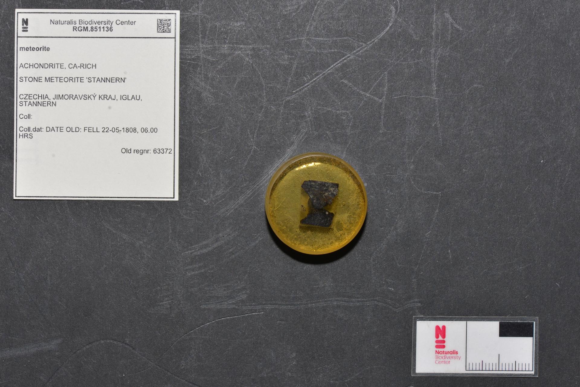 RGM.851136 | Eucrite-mmict