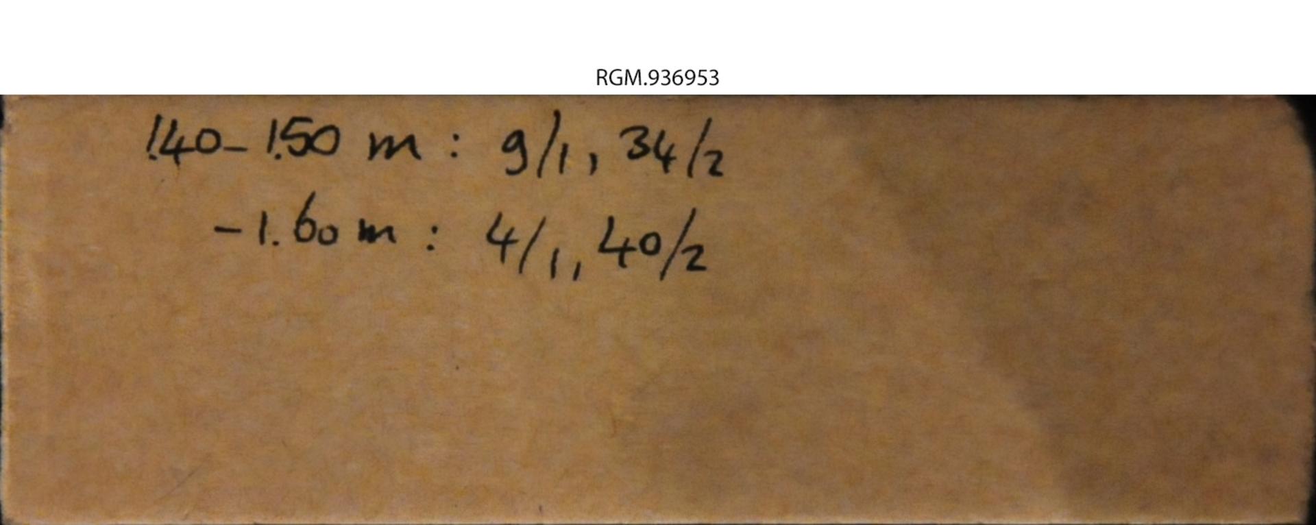 RGM.936953 | Pisidium nitidum Jenyns, 1832