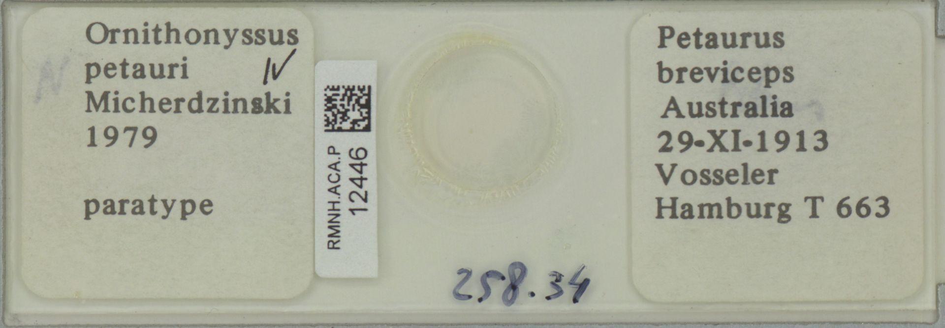 RMNH.ACA.P.12446 | Ornithonyssus petauri Micherdzinski 1979