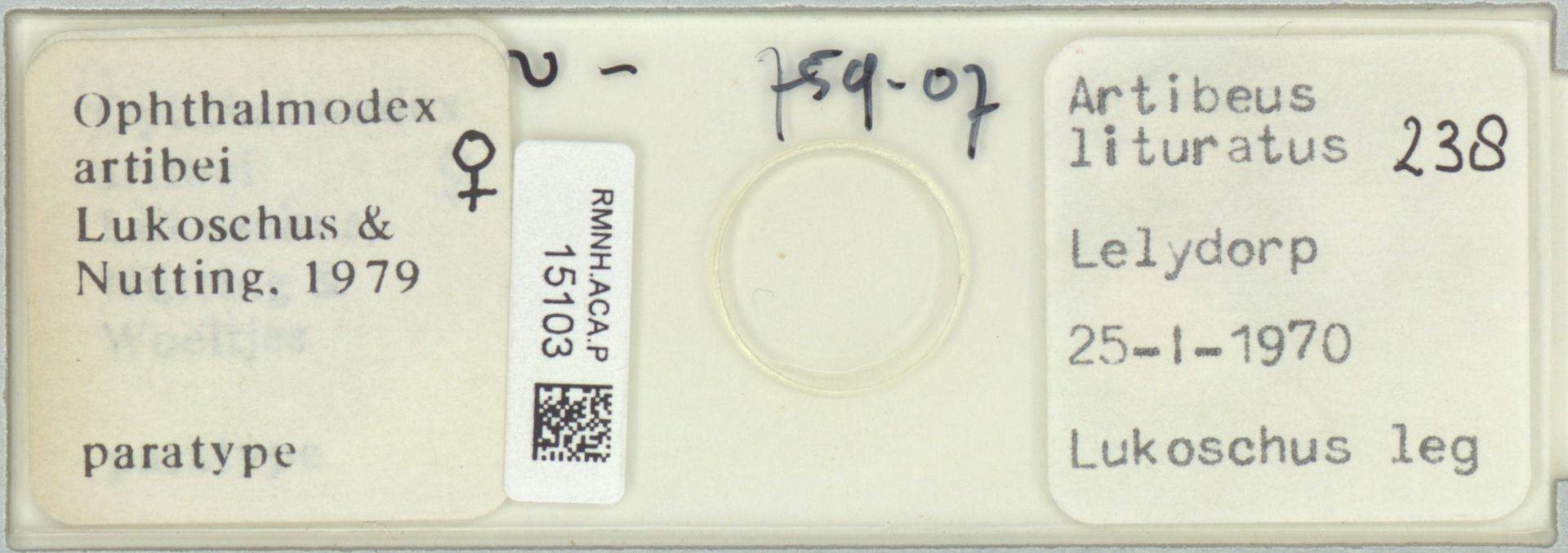 RMNH.ACA.P.15103   Ophthalmodex artibei Lukoschus & Nutting, 1979