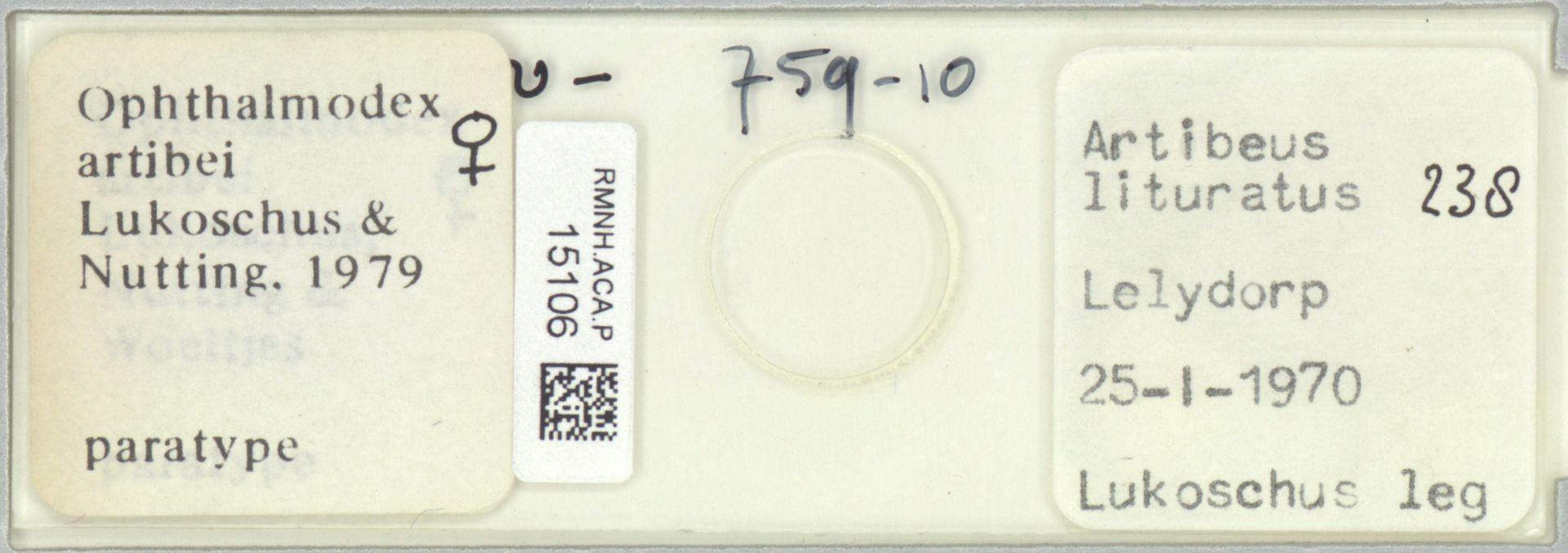 RMNH.ACA.P.15106 | Ophthalmodex artibei Lukoschus & Nutting, 1979