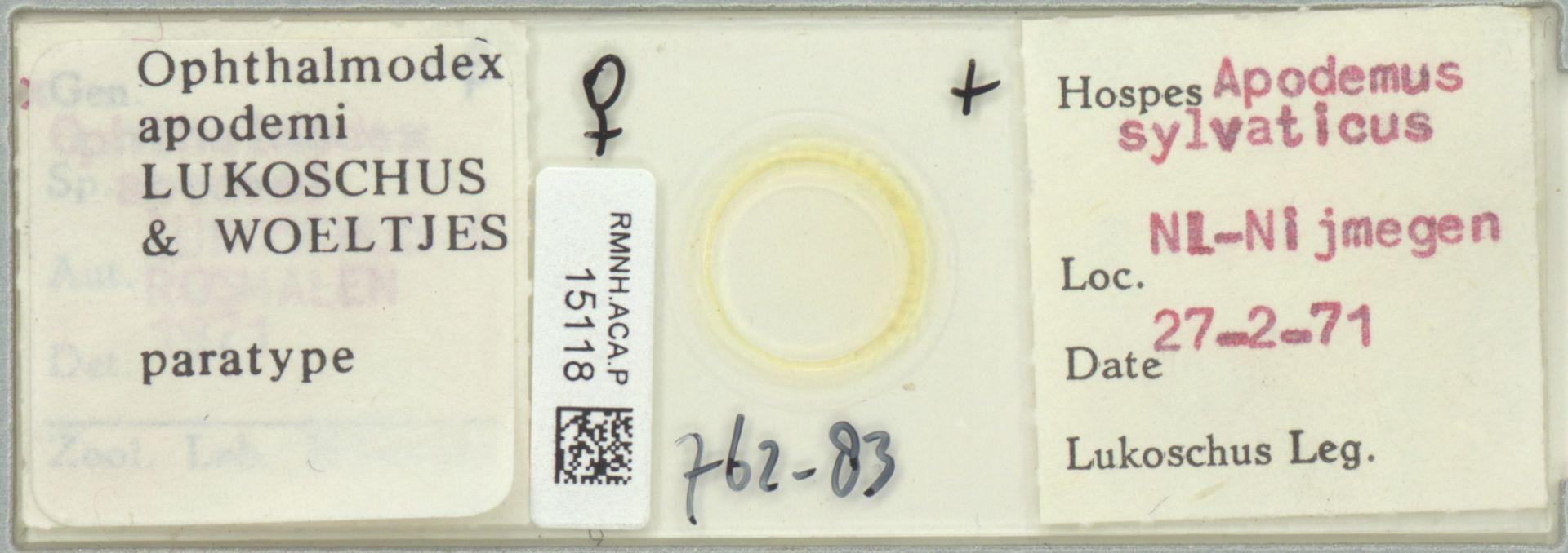 RMNH.ACA.P.15118 | Ophthalmodex apodemi Lukoschus & Woeltjes