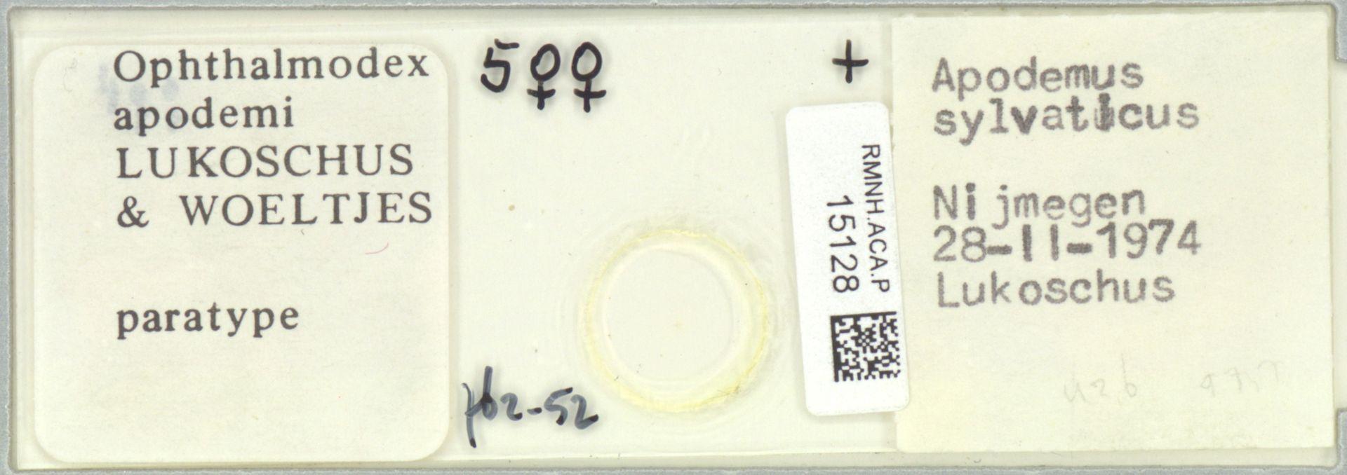 RMNH.ACA.P.15128 | Ophthalmodex apodemi Lukoschus & Woeltjes