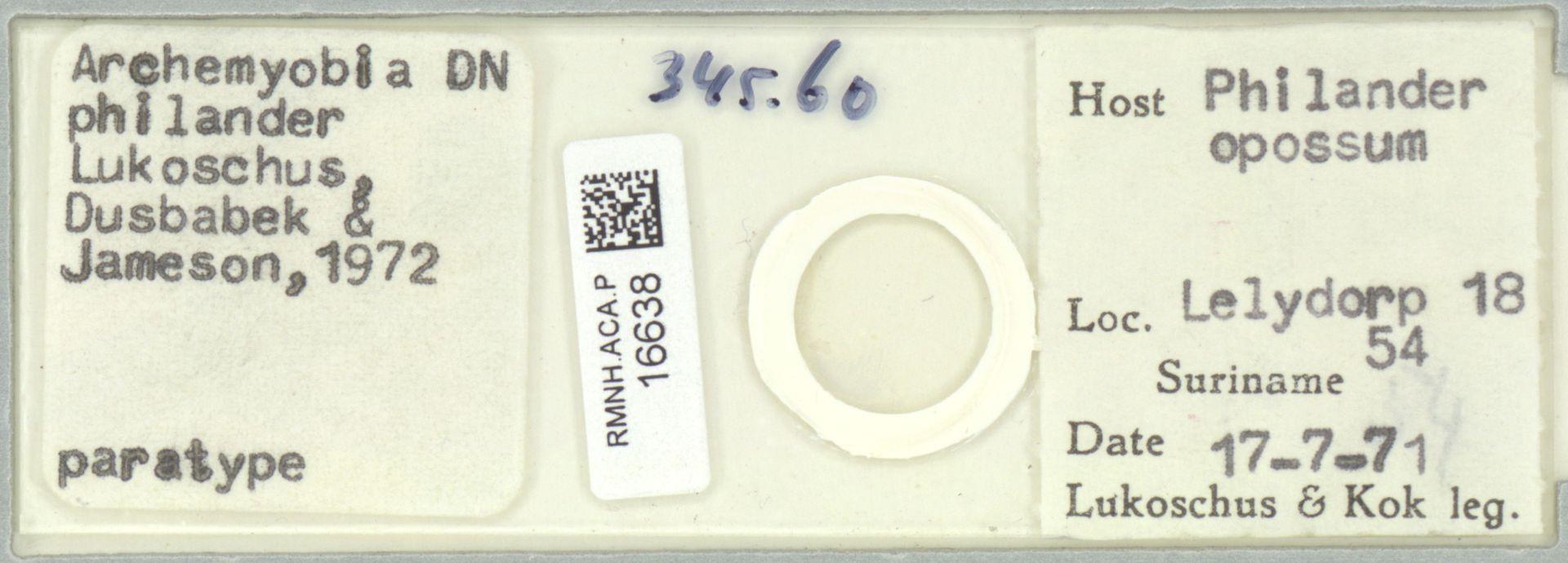 RMNH.ACA.P.16638 | Archemyobia philander