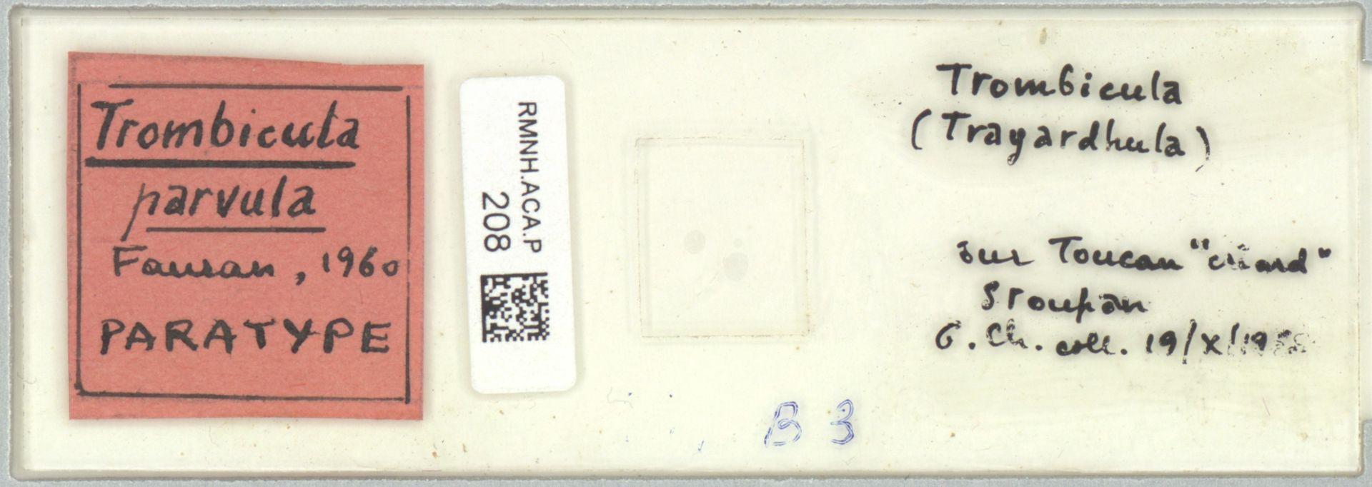 RMNH.ACA.P.208 | Trombicula parvula Fauran, 1960