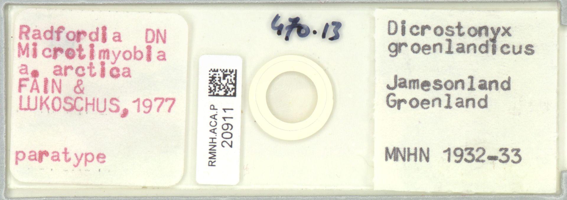 RMNH.ACA.P.20911   Radfordia Fain & Lukoschus, 1977