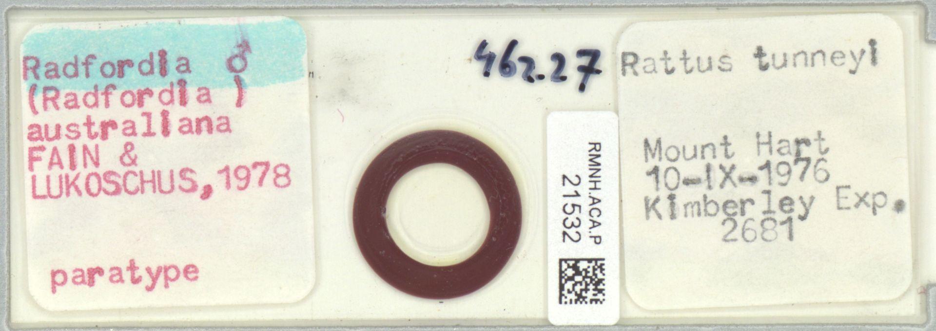RMNH.ACA.P.21532 | Radfordia (Radfordia) australiana Fain & Lukoschus, 1978