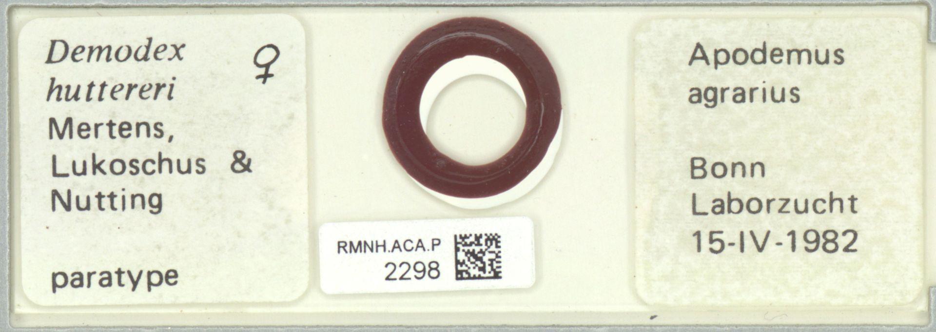 RMNH.ACA.P.2298 | Demodex hutteri Mertens, Lukoschus & Nutting