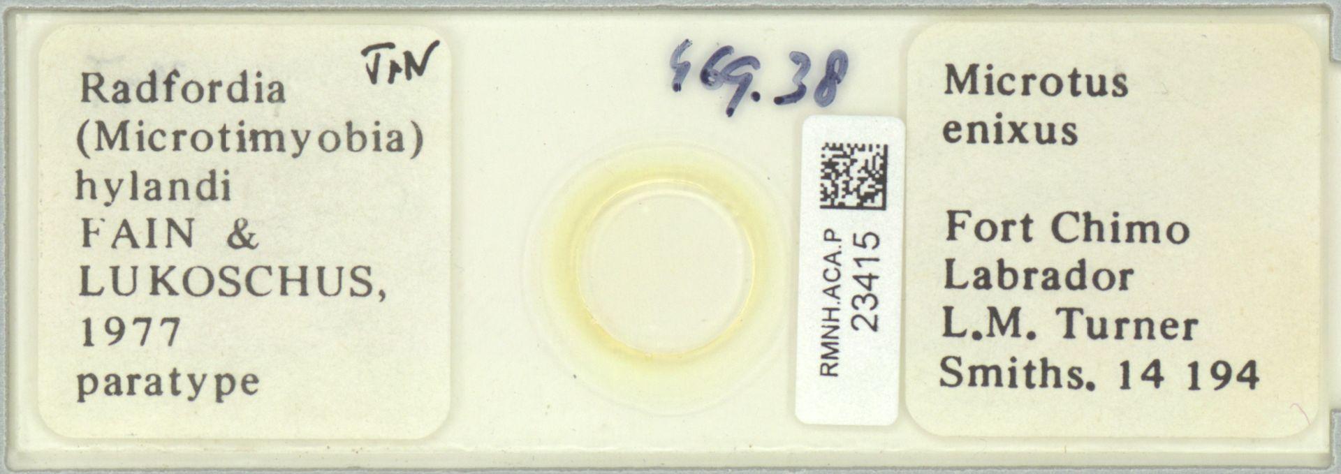 RMNH.ACA.P.23415 | Radfordia (Microtimyobia) hylandi Fain & Lukoschus, 1977