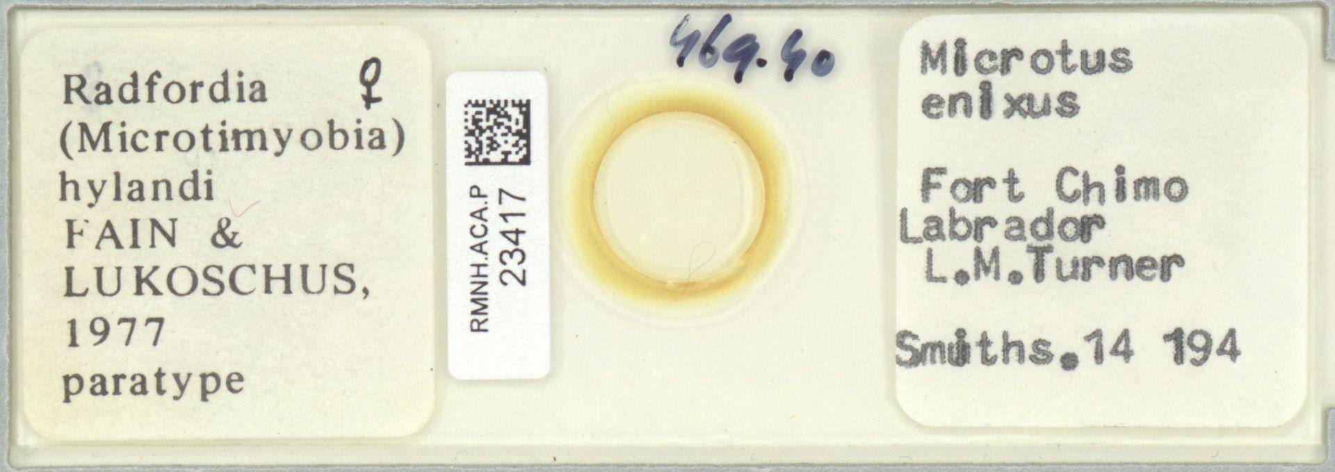 RMNH.ACA.P.23417 | Radfordia FAIN & LOKOSCHUS, 1977