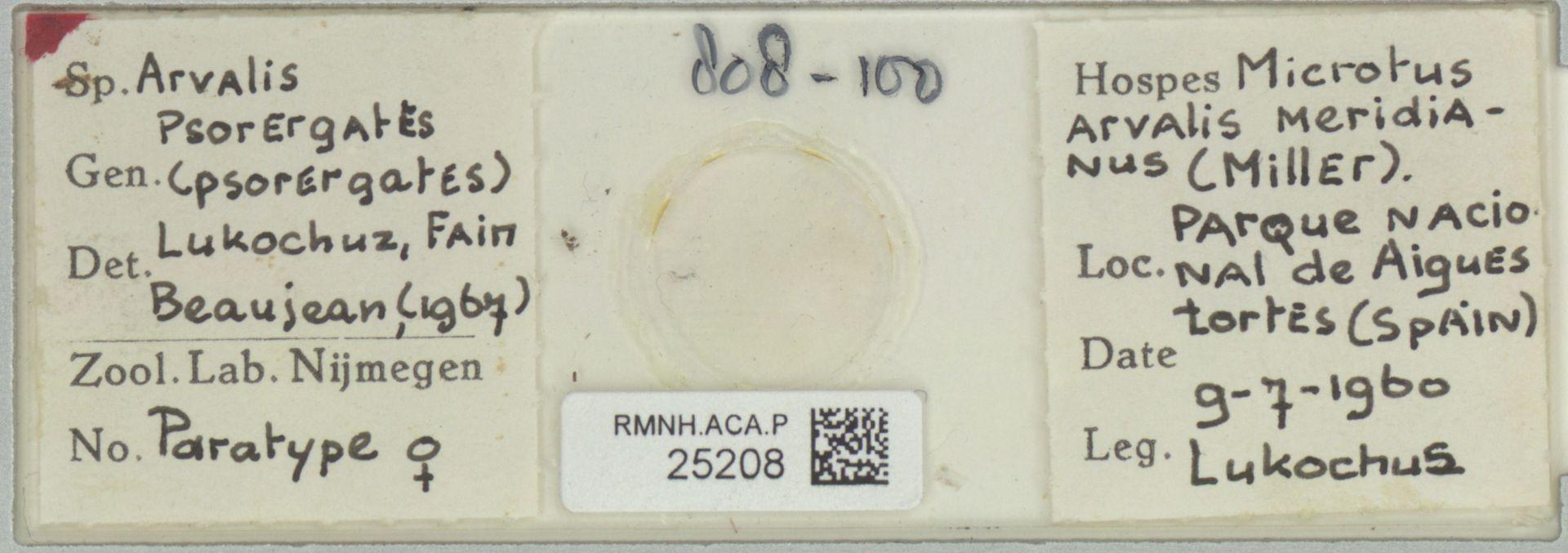 RMNH.ACA.P.25208 | Psorergates Lukochuz, Fain Beaujean (1967)