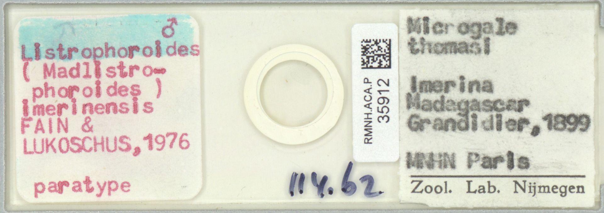 RMNH.ACA.P.35912 | Listrophoroides (Madlistrophoroides) imerinensis Fain & Lukoschus, 1976