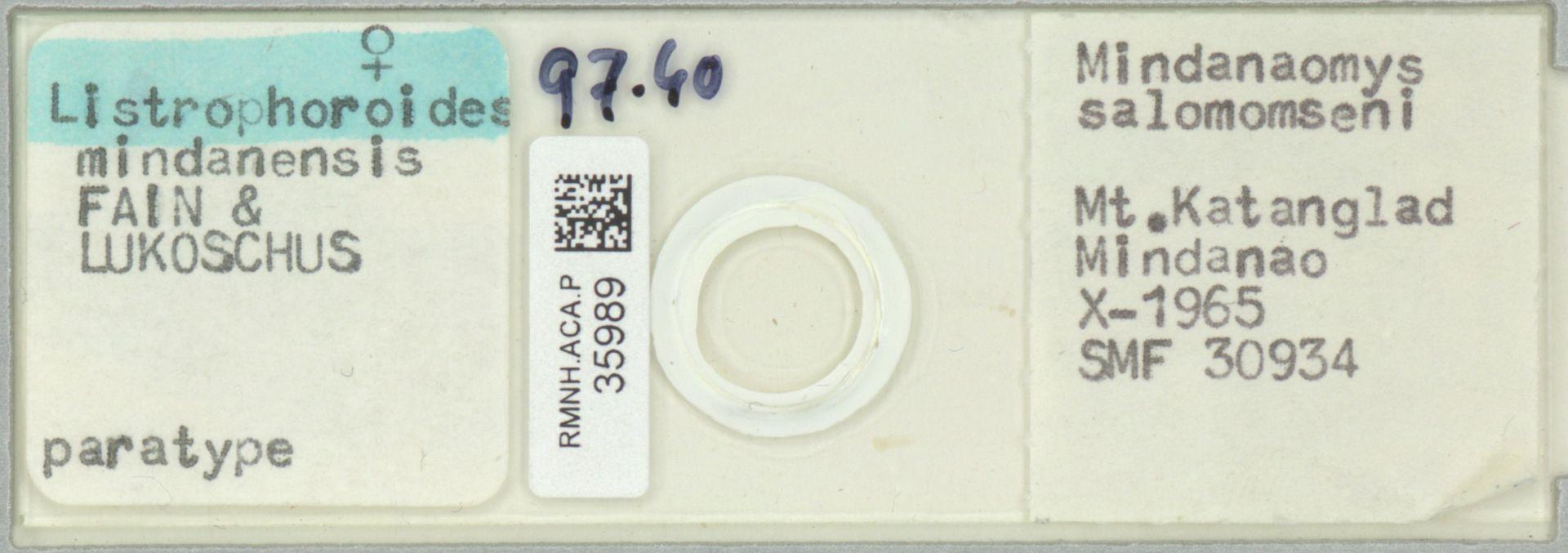 RMNH.ACA.P.35989 | Listrophoroides mindanensis Fain & Lukoschus