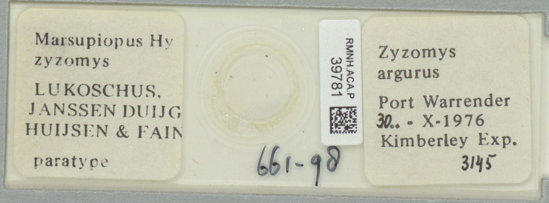 RMNH.ACA.P.39781 | Marsupiopus zyzomys Lukoschus, Janssen, Duijghuijsen & Fain