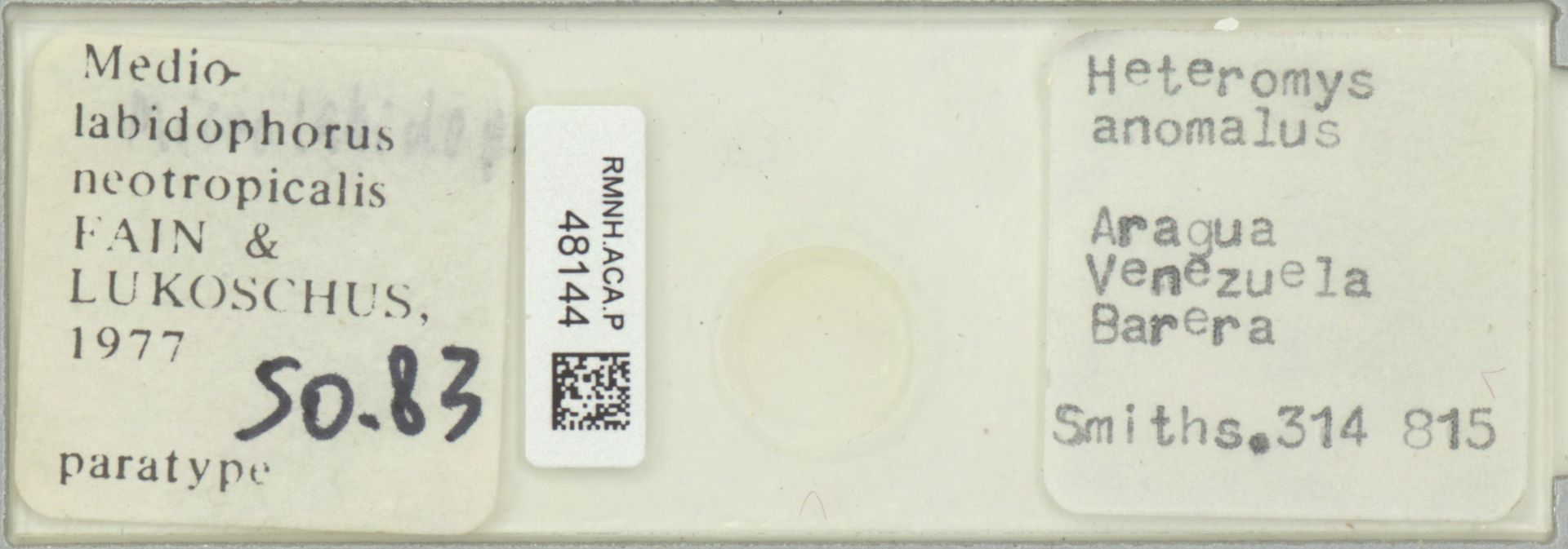 RMNH.ACA.P.48144 | Mediolabidophorus neotropicalis Fain & Lukoschus 1977